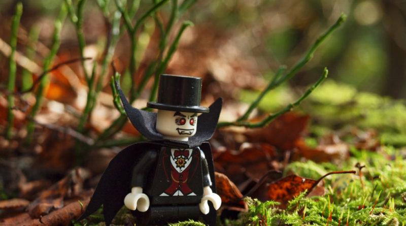 LEGO Woodland Walk 800x445