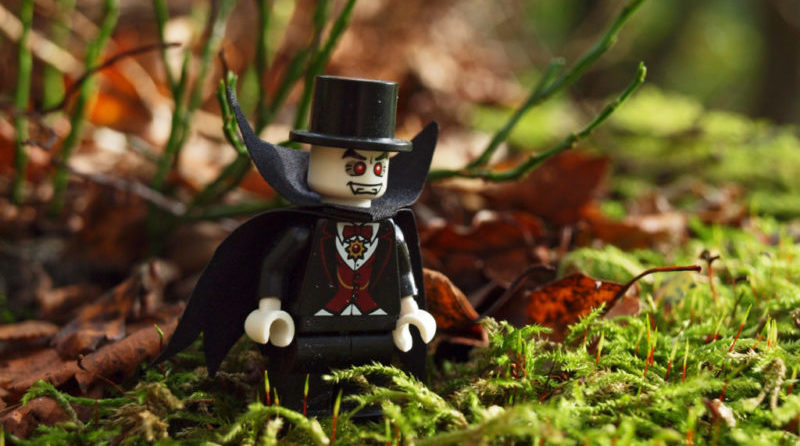 LEGO Woodland Walk E1604362168119