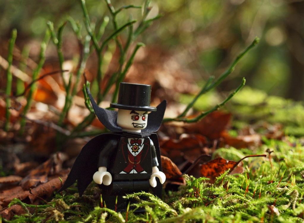 LEGO Woodland Walk