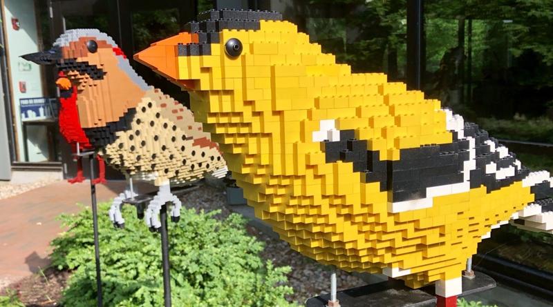 LEGo Bricks Birds Bugs Featured