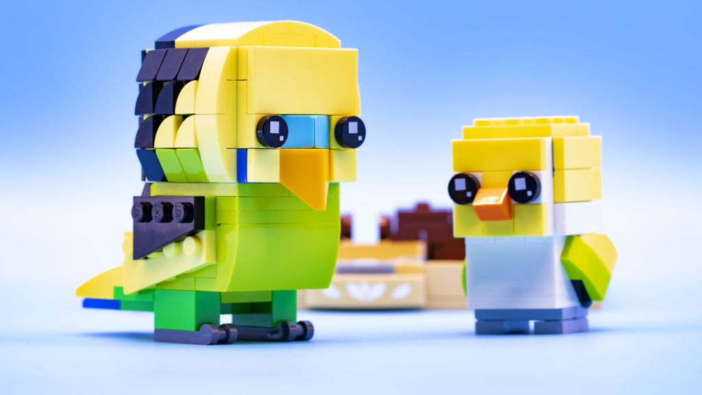 Lego Brickheadz Pets 40443 Budgie 23