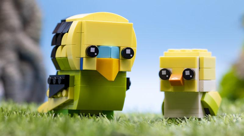 Lego Brickheadz Pets 40443 Budgie FEATURED Resized 800x445