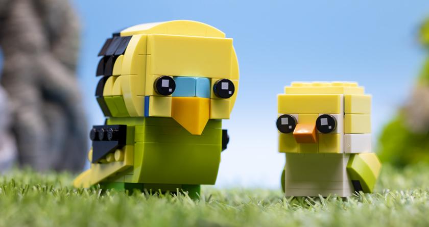 Lego Brickheadz Pets 40443 Budgie FEATURED Resized