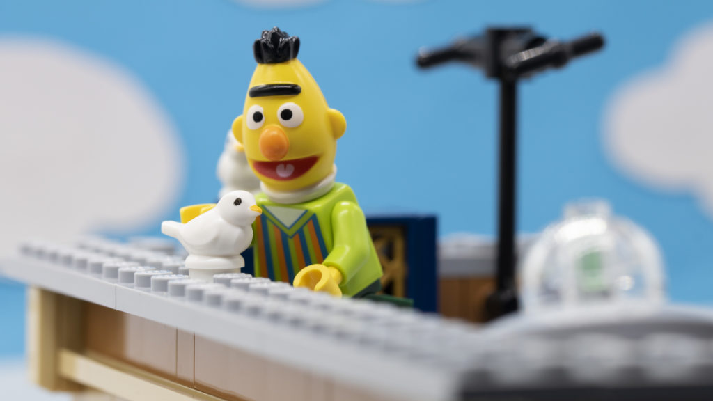 Bert With Pigeons 1