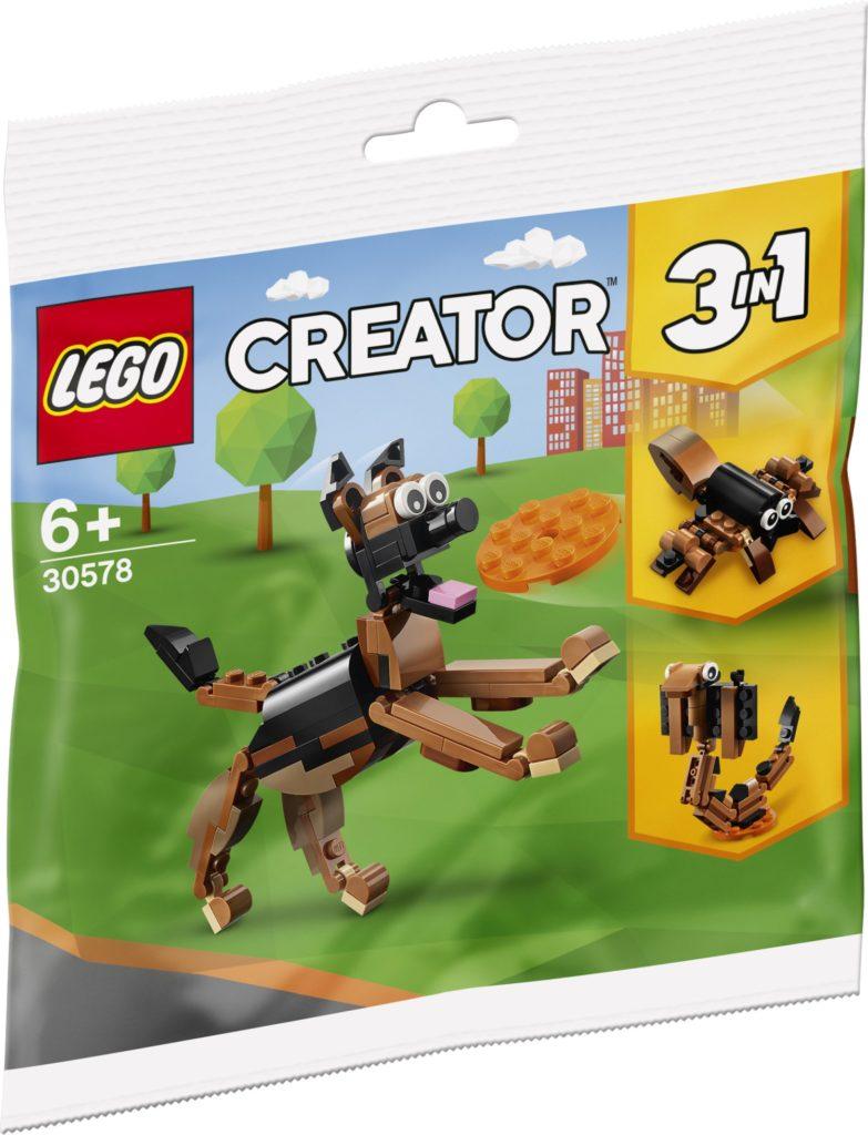 lego polybags 2021 creator 30578 0001
