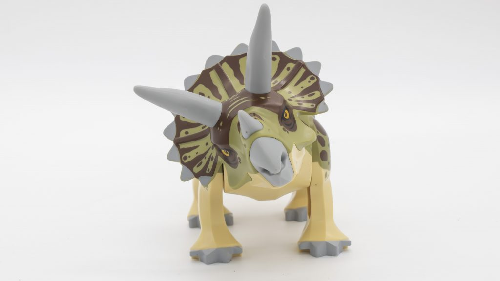 Triceratops Front On 1024x576