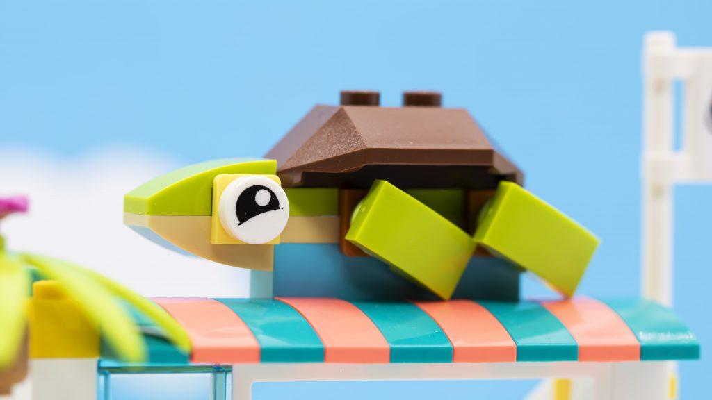 Turtle Sign 1024x576
